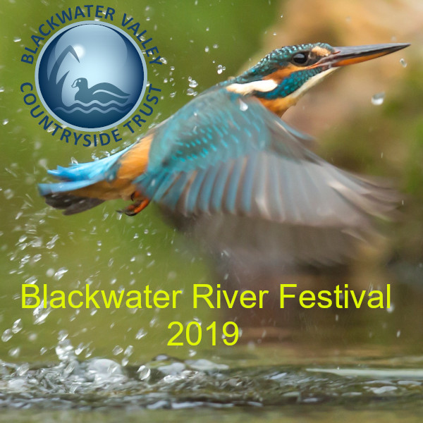 Blackwater River Festival 2019